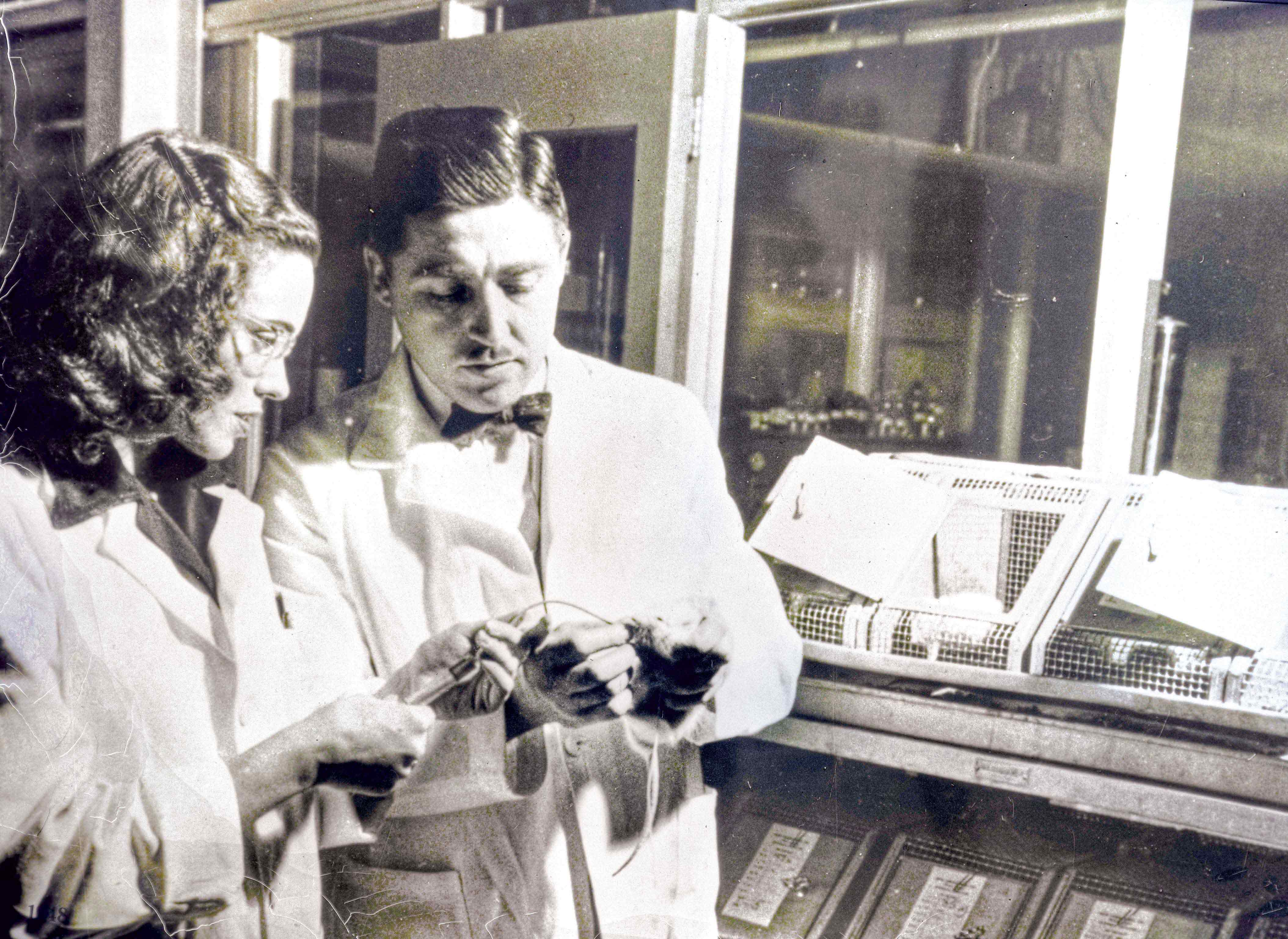 Helen and Alfred Free in their laboratory