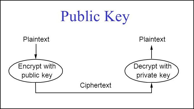 The RSA encryption algorithm uses a public key to encrypt messages and a private key to decrypt.