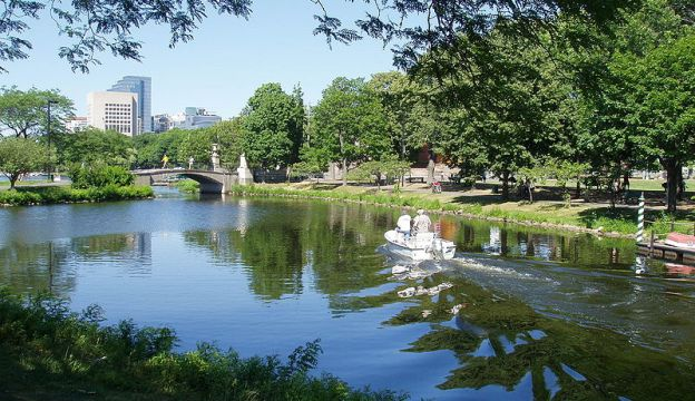 Charles River Basin Project-