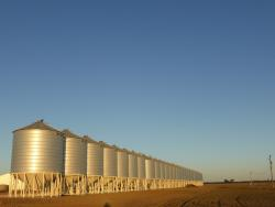 The Circular, Corrugated, Galvinized Steel Grain Bins