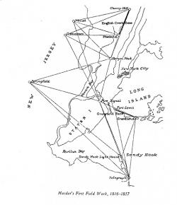 Cranetown Triangulation Site